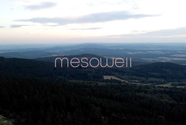 mesowell